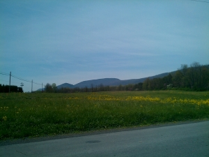 Tuscarora Mtn.'s summit as seen from the road leading to Cowans Gap State Park.