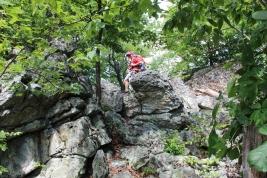 Chipmunk hiking the Tuscarora Trail.